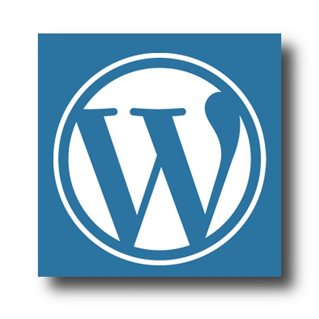 Statistika apie WordPress
